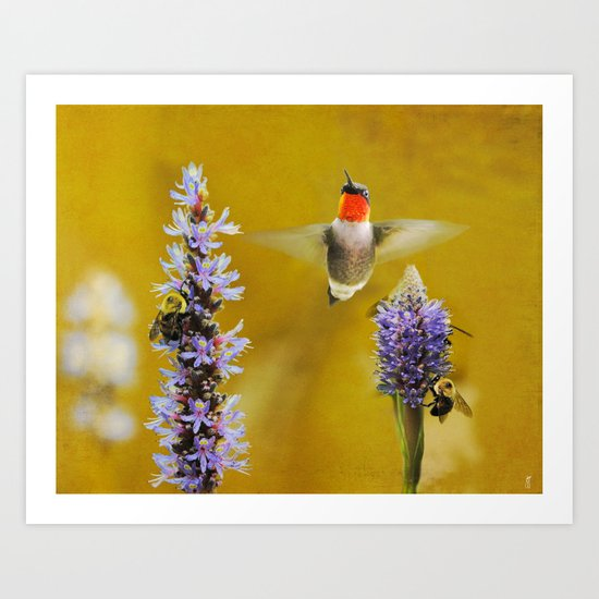 Breakfast With The Bees Art Print