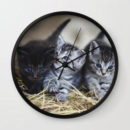 PAWFRIENDS Wall Clock