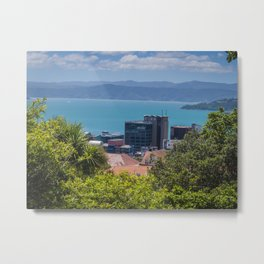 Wellington City And Harbour Metal Print