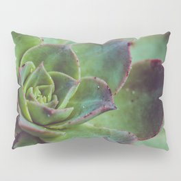 Succulence Pillow Sham