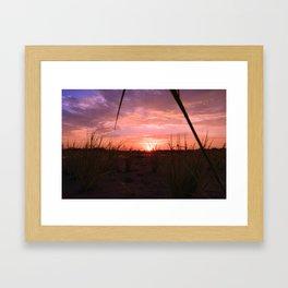 A look through the grass Framed Art Print