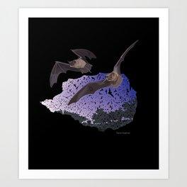 Bracken Cave Bats Art Print