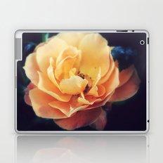 Summer Peach Laptop & iPad Skin