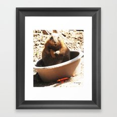 A Bowl Of Groundhog And Veggies Framed Art Print