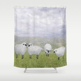 sheep and chicory Shower Curtain