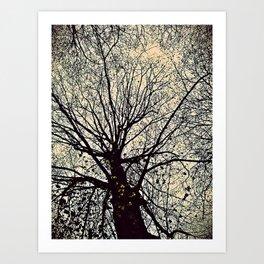 tree. Art Print