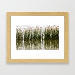 Pelican Hideout Framed Art Print