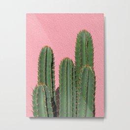 Cactus on Pink, Melrose Place Metal Print