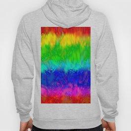 Radiant Rainbow Hoody