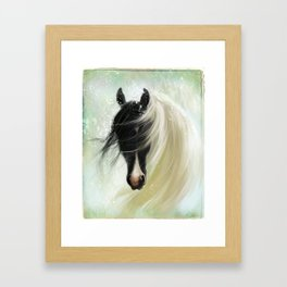 Gypsy Vanner Framed Art Print