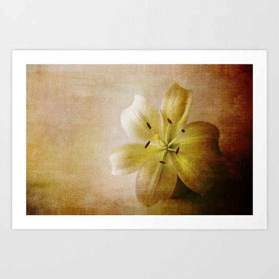 Textured Lily Art Print