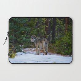 Wolf in Jasper National Park Laptop Sleeve