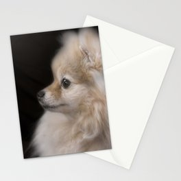 Willow The Pretty Pomeranian Puppy Stationery Cards