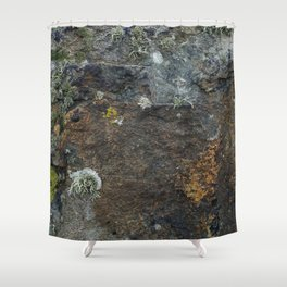 Natural Coastal Rock Texture with Lichen and Moss Shower Curtain