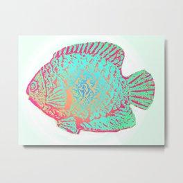 Sunfish Colors Metal Print