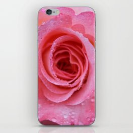 Pretty Pink Rose iPhone Skin