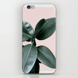 Decorum III iPhone Skin