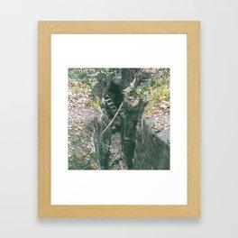 Hidden Ladder Framed Art Print