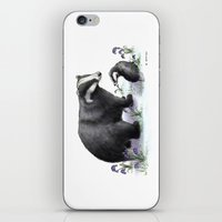 badger iPhone & iPod Skins featuring Badger by SteveStanleyArt