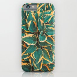 Plantain Lily Foliage Plant Pattern iPhone Case