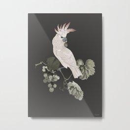 Cockatoo and Grapevine Metal Print