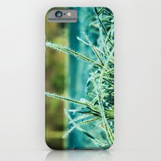 on a cold and sunny morning iPhone 6s Slim Case