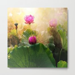 Pink Lotus Flower Metal Print