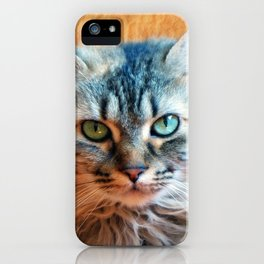 Miss Tootles iPhone Case
