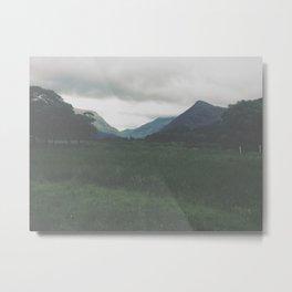 Wander. Metal Print