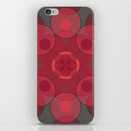 Circle Star 4x8 iPhone Skin