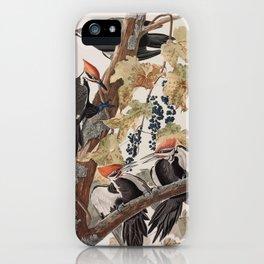 John James Audubon -Woodpecker iPhone Case
