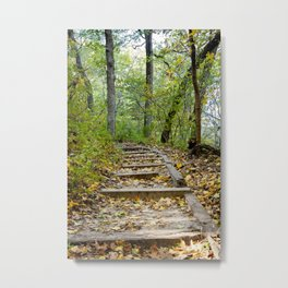 Starved Rock Hiking Trail (Fall Photography) Metal Print