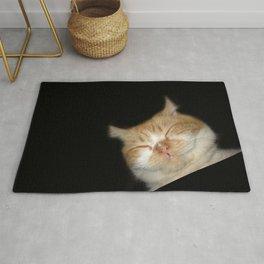 Funny Sleeping Cat Rug