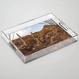 Saguaro Garden Acrylic Tray