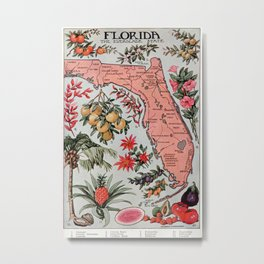 Vintage Map of Florida (1917) Metal Print