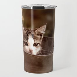 Kitten in tub Travel Mug