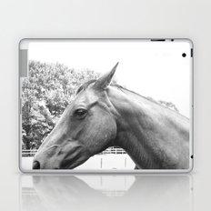 Horse Head IV Laptop & iPad Skin