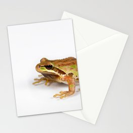 Green and brown frog on white background Stationery Cards