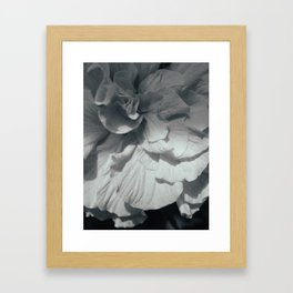 Hibiscus BW Framed Art Print