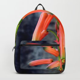 Come Rain Or Come Dry Backpack