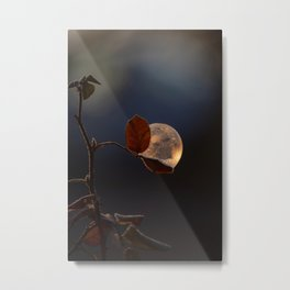 Soap bubbles moments Metal Print