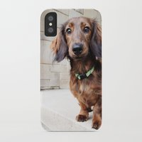 dachshund iPhone & iPod Cases featuring Dachshund  by Brooke Davies - Arrow Creek Designs