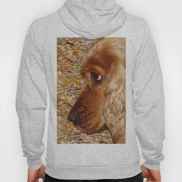 Dog Cocker Spaniel Hoody