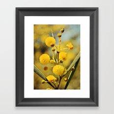 Yellow Puffballs Framed Art Print