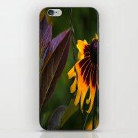 burgundy iPhone & iPod Skins featuring Burgundy BFFS! by gymmybob