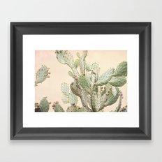 Cactus 2 Framed Art Print