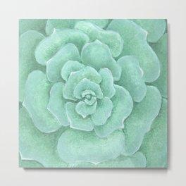 Mint Succulent Metal Print