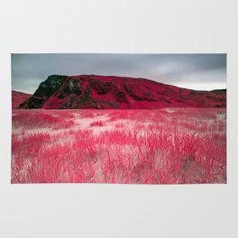 Infrared Beach and Reeds - Arctic Norway Rug