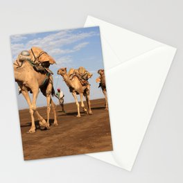 Camel Caravan Stationery Cards