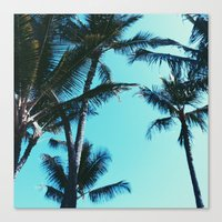 palm trees Canvas Prints featuring Palm Trees by Alexandra Str